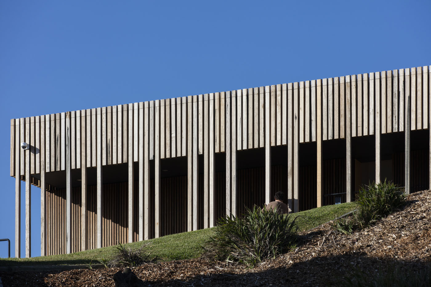 Marks Park Amenities by Sam Crawford Architects, striking contrast of recycled timber agianst dark shadows