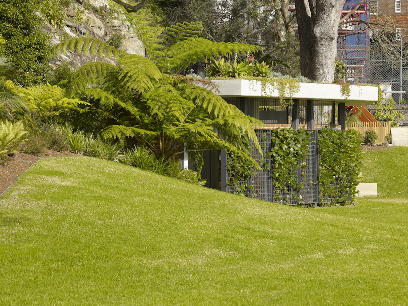 Beare Park Amenities by award winning Sydney public architecture firm Sam Crawford Architects. The facility blending with the surrounding greenery
