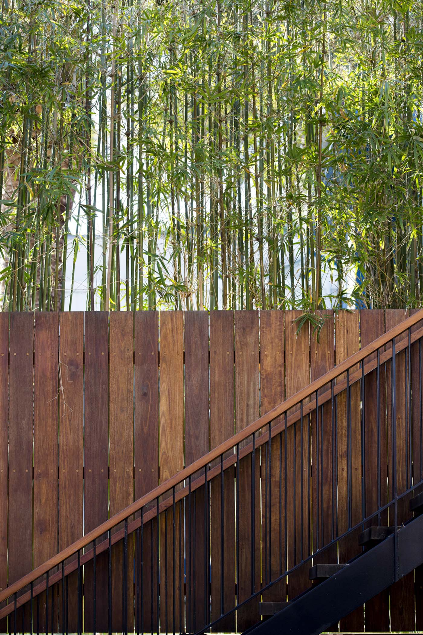 The Bower by Sam Crawford Architect, vertical vegetation against wooden fence