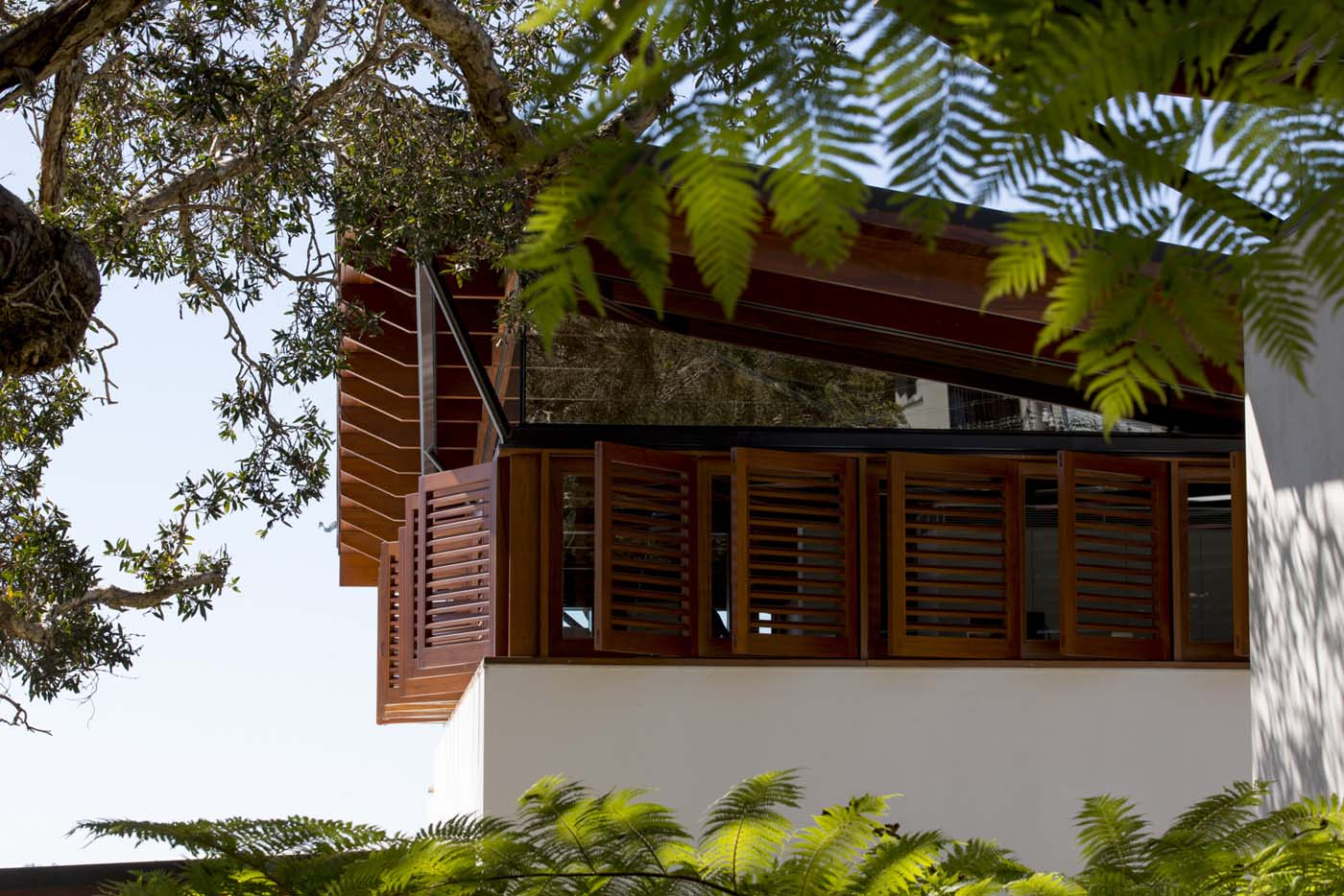 The Bower by Sam Crawford Architect, view of roof pitch from within vegetation