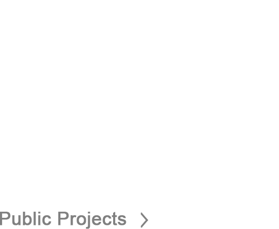 Public Projects
