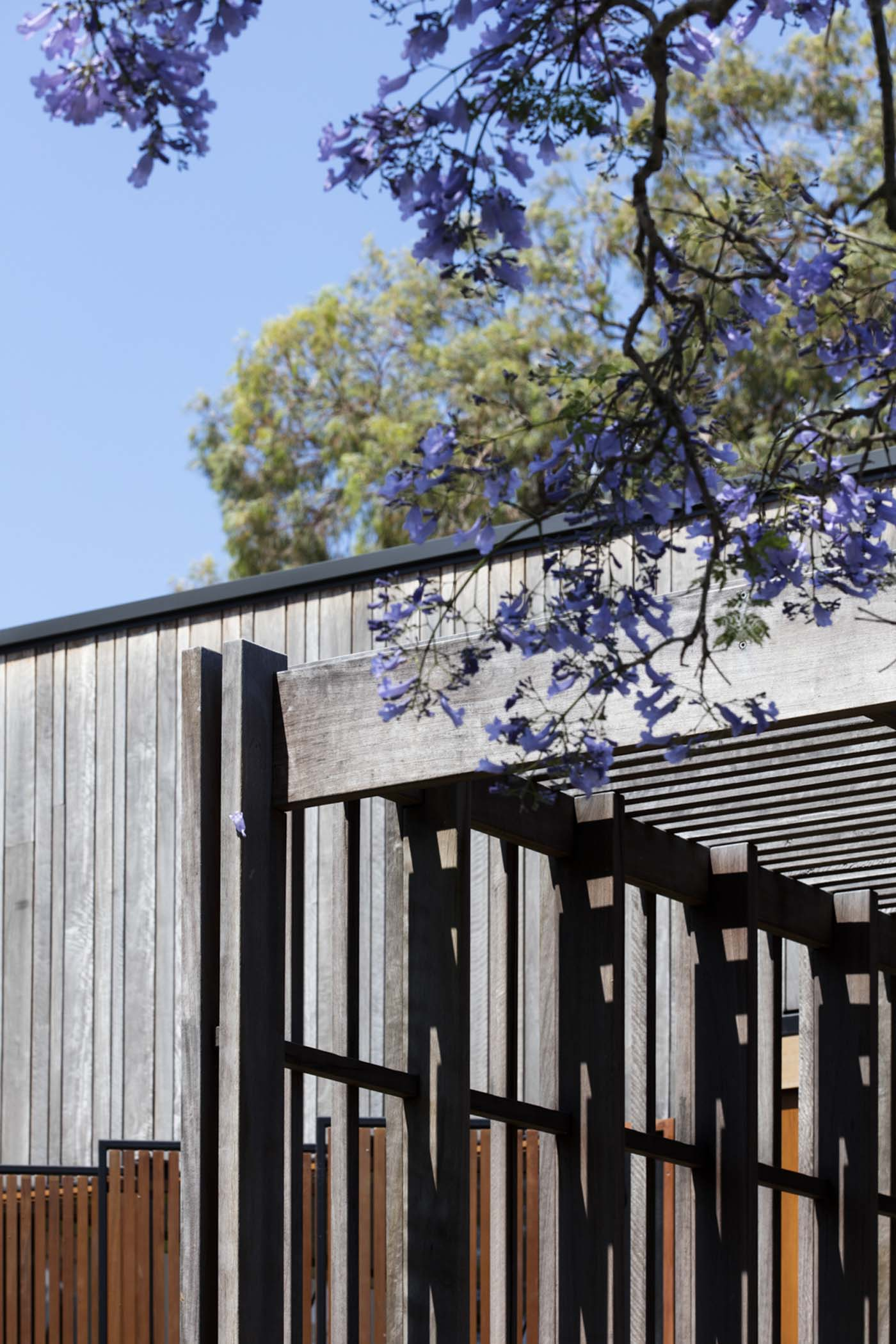 Sung Dobson house by Sam Crawford Architects, Sydney. Spotted gum timber pergola.