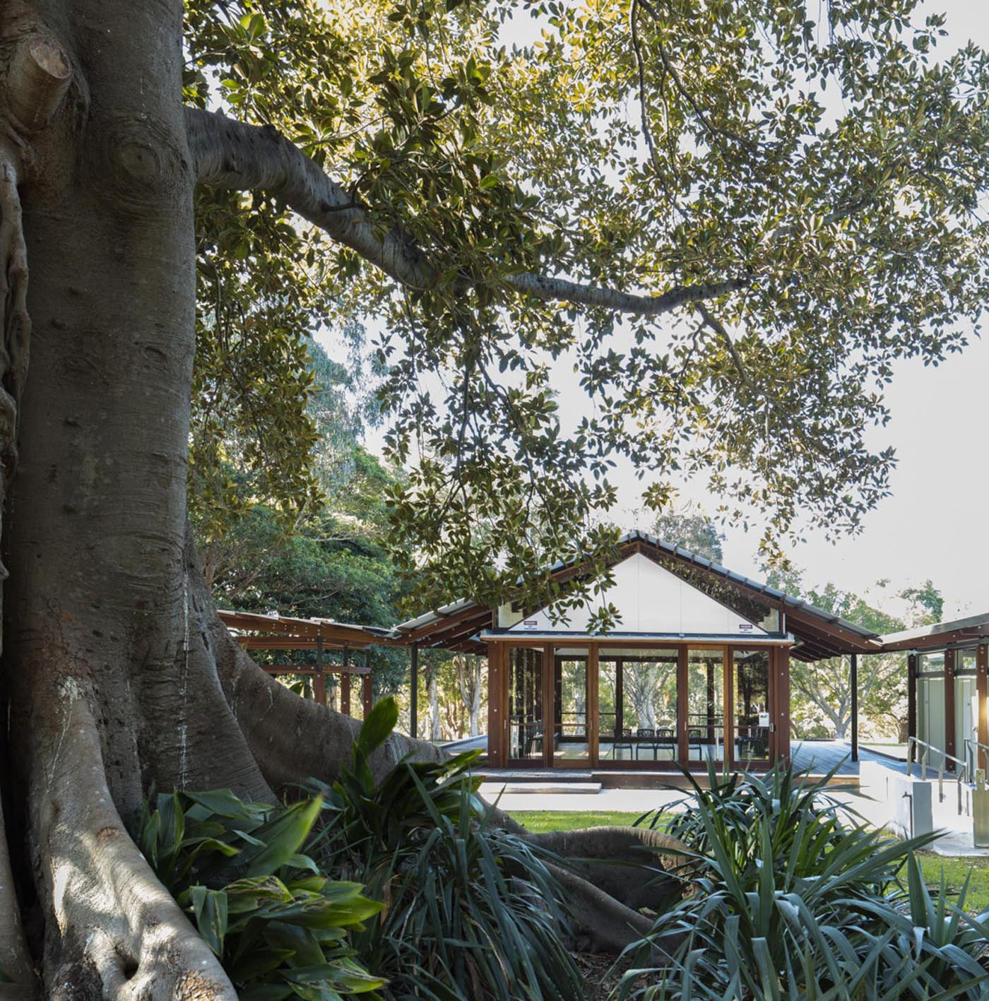 Cabarita Park Conservatory by award winning public architectural firm Sam Crawford Architects. The conservatory sits in harmony with its natural setting.